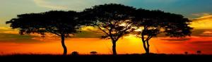 Uganda-Express-Safari_Banner