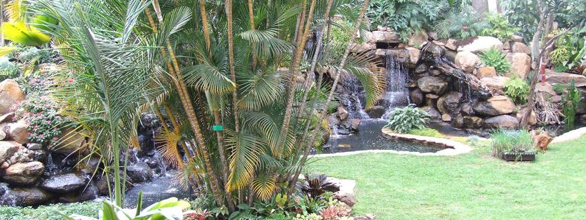 fairview-hotel-gardens