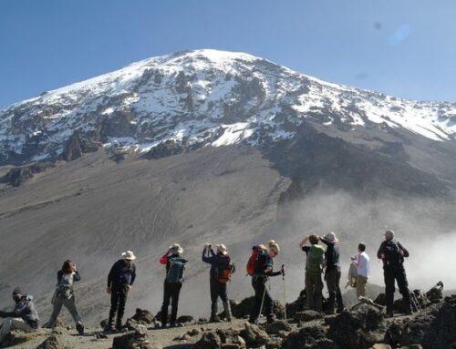 Mount Kilimanjaro Hiking Tours Tanzania