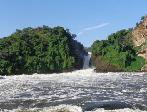 Save Murchison falls