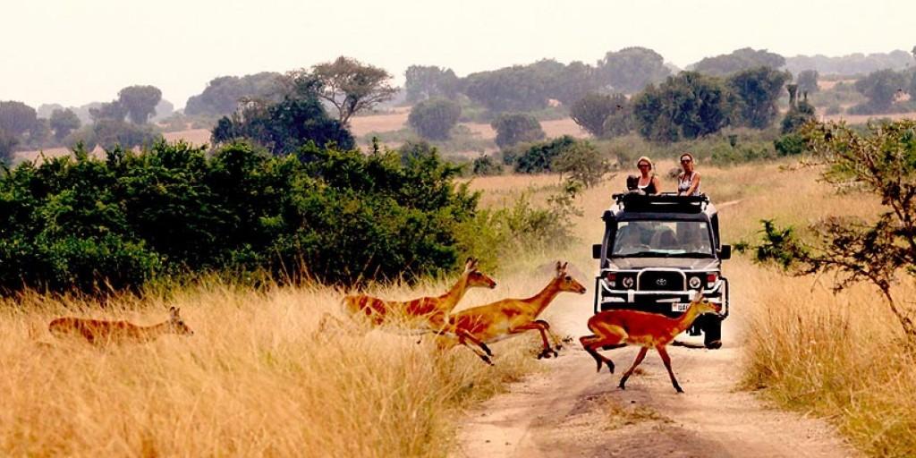 mweya-safari-lodge-queen-elizabeth-national-park-uganda-2673