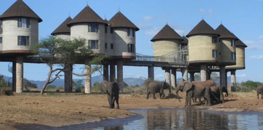 2 Days Tsavo east park safari