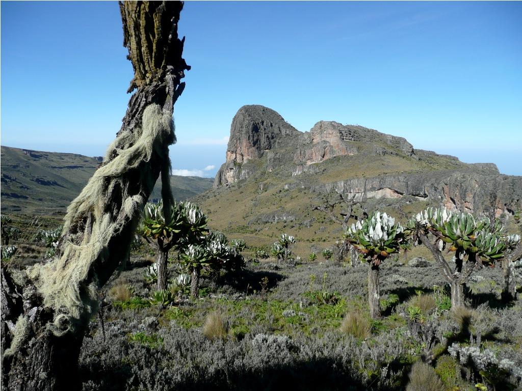 Mountain Elgon national park - Uganda's National Park