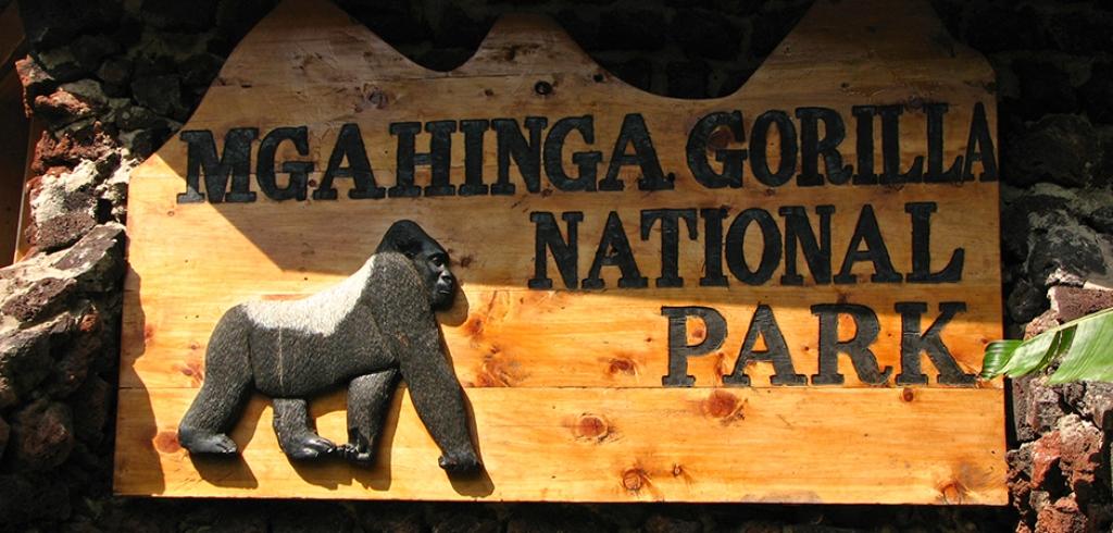 Mgahinga Gorilla national park - Uganda's National Parks