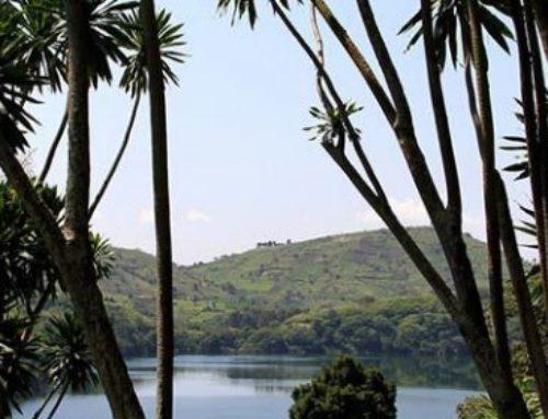 Kihingami Wetlands Sanctuary