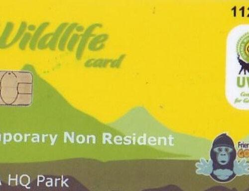 What is the cost of Uganda Gorilla Trekking Permit?